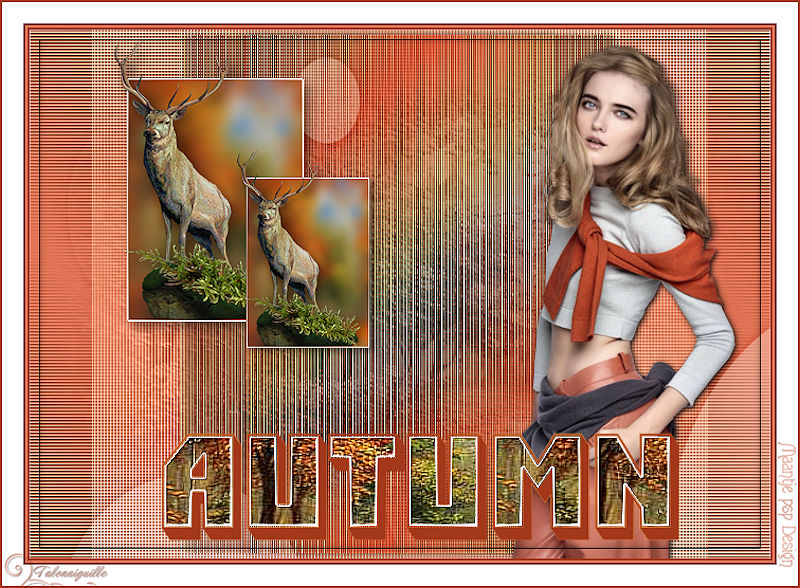 *** Top Autumn ***