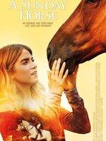 Née du mauvais côté de la barrière, Debi Connor va surmonter les préjugés et un accident quasi-mortel pour devenir championne d'équitation avec un cheval sous-estimé.
