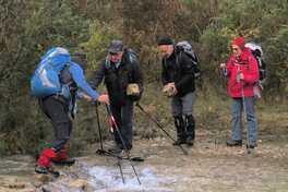 26 novembre 2019- une hivernale dans la forêt domaniale de Quint.
