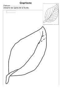 graphisme 3