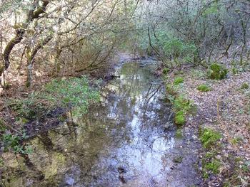 Le vallon est étroit et le sentier passe souvent tout au bord de l'eau.