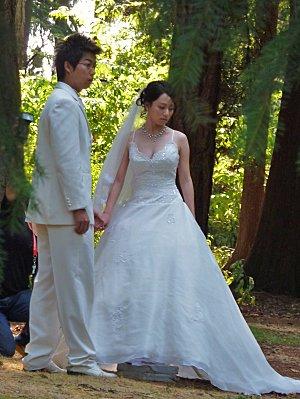 Jour 28 Stanley Park jardins mariés 2