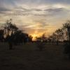 Mauritanie Premier bivouac Lever du soleil