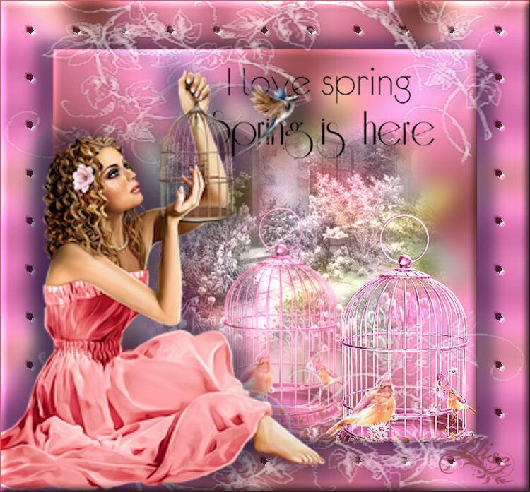 I love spring    de Arasimages