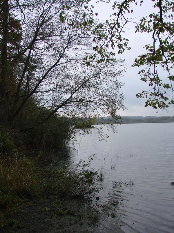 Lac de Virelles (2)
