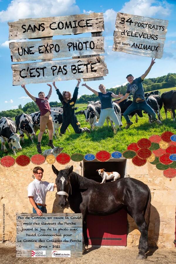 """Expo """"C'EST PAS BÊTE"""" au Theil, Val au Perche !"""