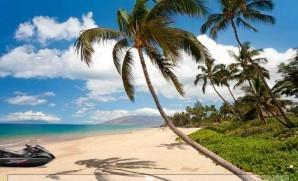 Sunny island escape