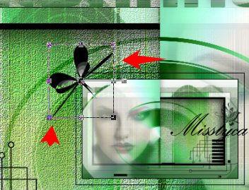 Lisanne-Noisette