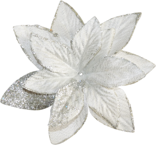 Tubes fleurs de noël 2