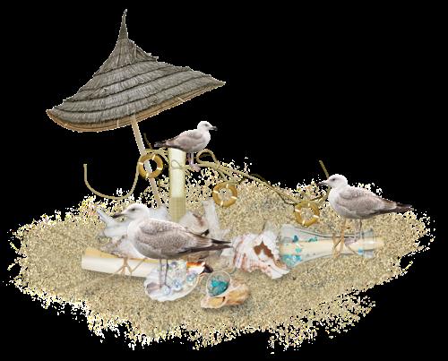 Cluster à la plage