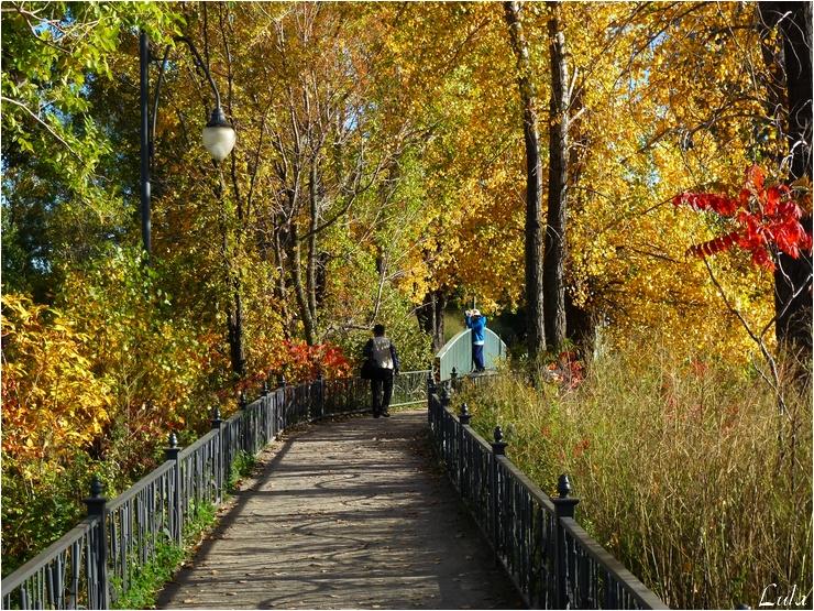 Le Parc des Rapides (Ville La Salle) à Montréal