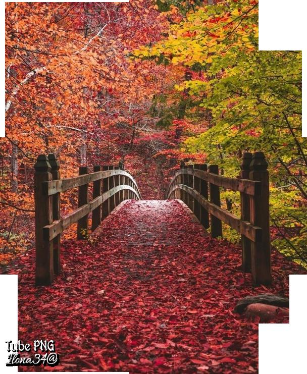 Tube paysage d'automne