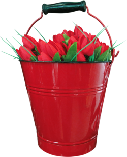 Fruits,fraise