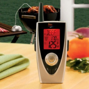 BBQ remote thermos