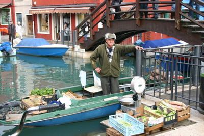 Blog de dyane :Traces de Vie, 5 légumes  par jour !!!!