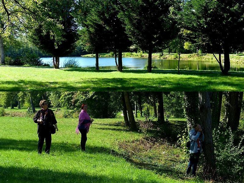 Découvrir la Moselle / Les étangs d'Outre-Moselle...