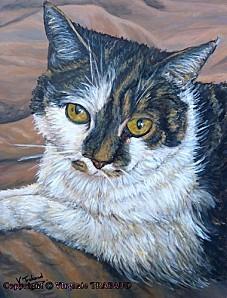 tableau-peinture-chat-acrylique-virginie-trabaud