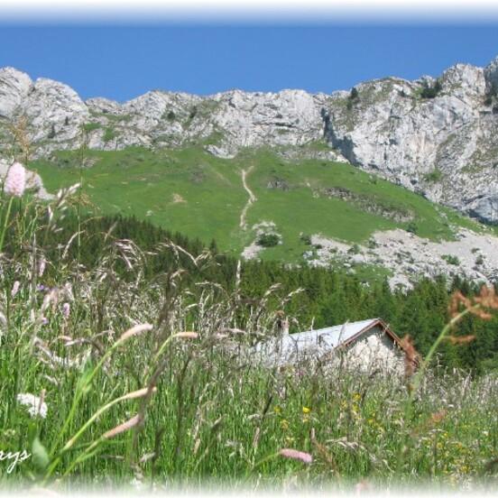 Randonnée d'été en Vercors
