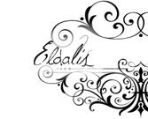 Premier anniversaire de ce blog !
