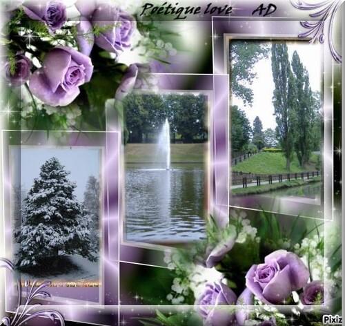 Bouquet En Image