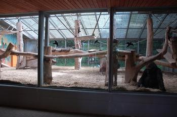Zoo Saarbrücken 2012 147