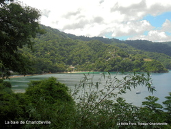 Tobago- Charlotteville