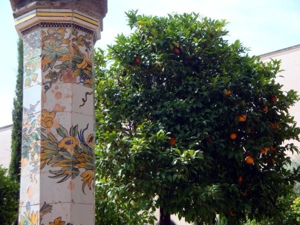 Santa Chiara, les oranges 2