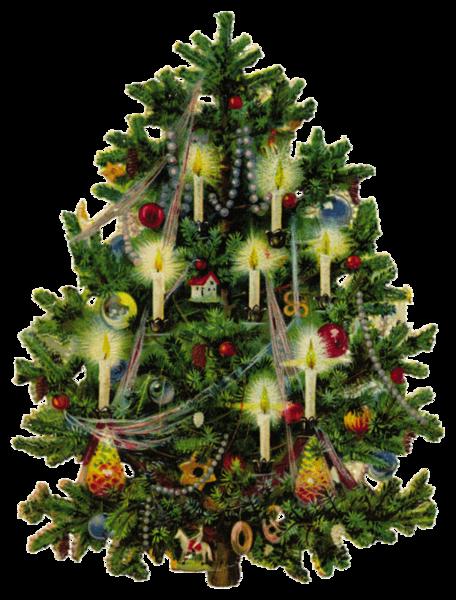 Le Sapin de Noël tradition germanique arrivée en France au 19ème siècle