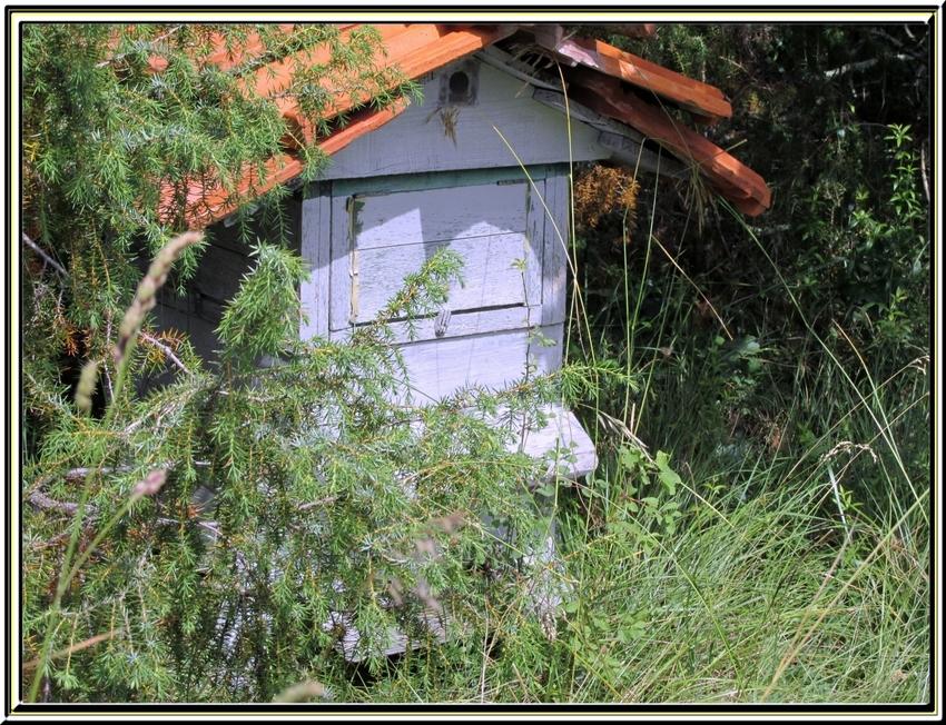 Balade dans la campagne quercynoise (de Rocamadour à Cahors) en juin 2014