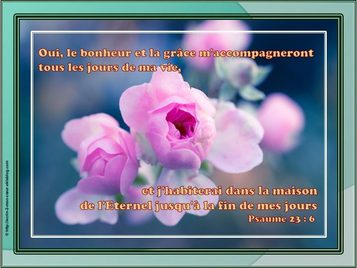 Le bonheur et la grâce m'accompagneront - Psaumes 23 : 6