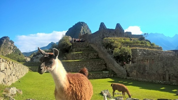 Les derniers habitants de la citadelle du Machu Picchu