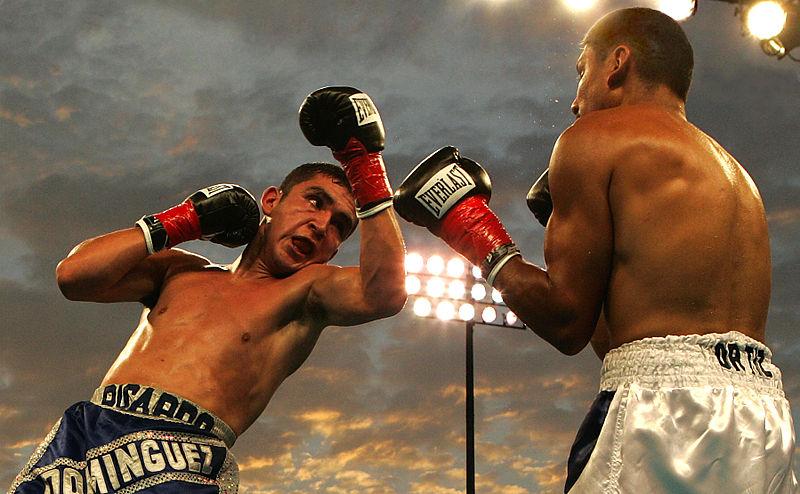 Boxe anglaise, l'un des sports de combat le plus médiatisé