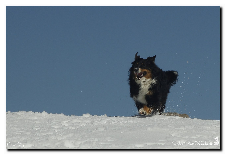Un petit retour sur la neige...