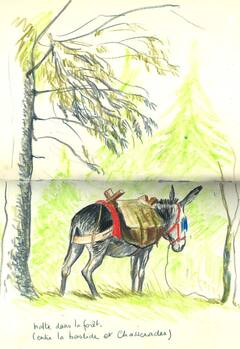 Stevenson - Voyage avec un âne dans les Cévennes