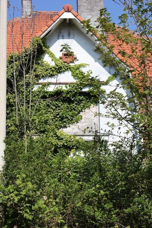 Découverte d'un village déserté(ou presque)à Doël,la nature reprend ses droits.