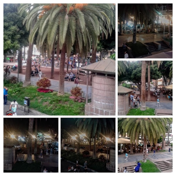 Puerto de La Cruz : Plaza Charco à 1 h 00 d' intervalle ...