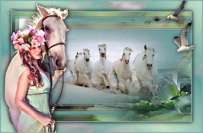Vos versions - White Horses