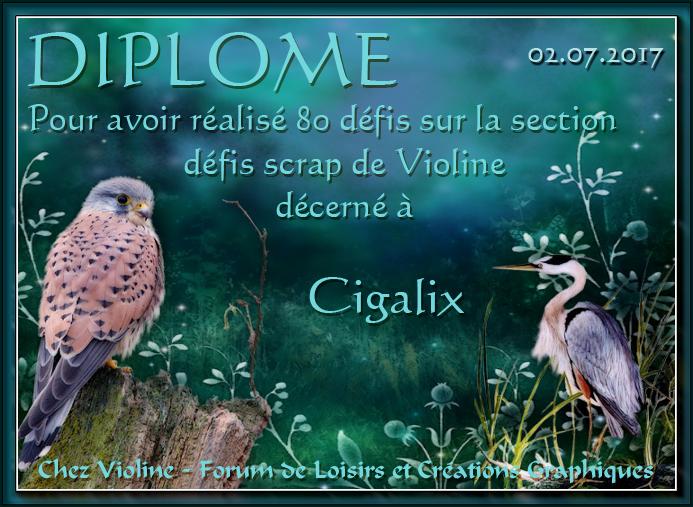 Diplômes Chez Violine