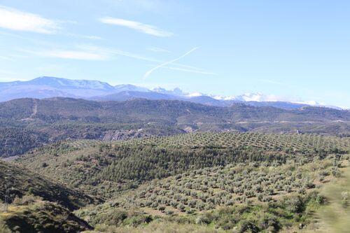 8 mai - Beas de Granada - Crevillent (Murcia)