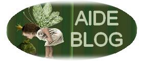 aide pour blog