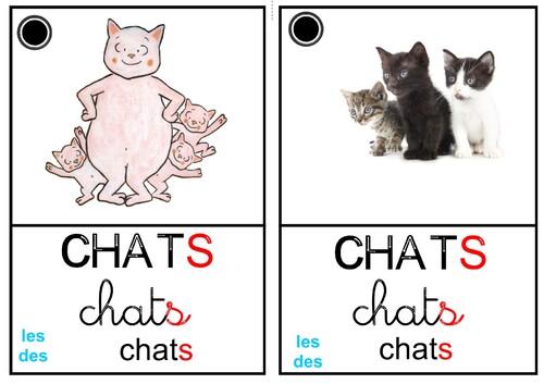 Mots du jour mis dans ma boîte mémoire 1,2,3 les petits chats suite