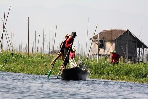 A l'Est du Myanmar