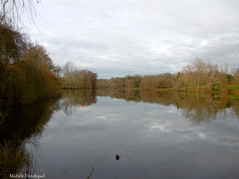 Une balade autour du Lac de Christus à ST PAUL LES DAX (40), le 21 décembre (suite n° 2 et fin)...