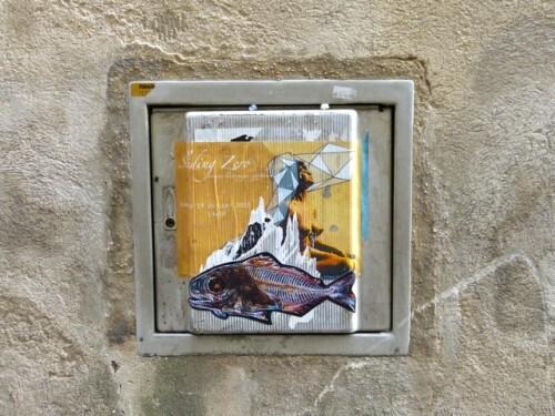 Poisson street-art cadre
