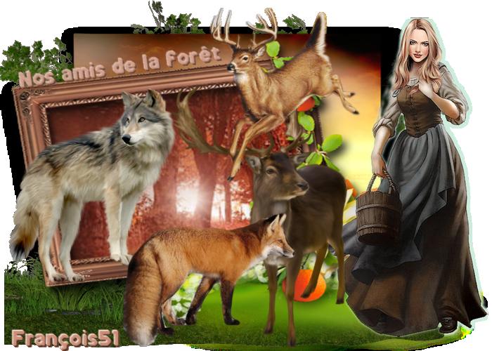 """Défi pour Lara """" Nos amis de la forêt """""""