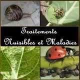 """Traitements """"Nuisibles et Maladies"""""""