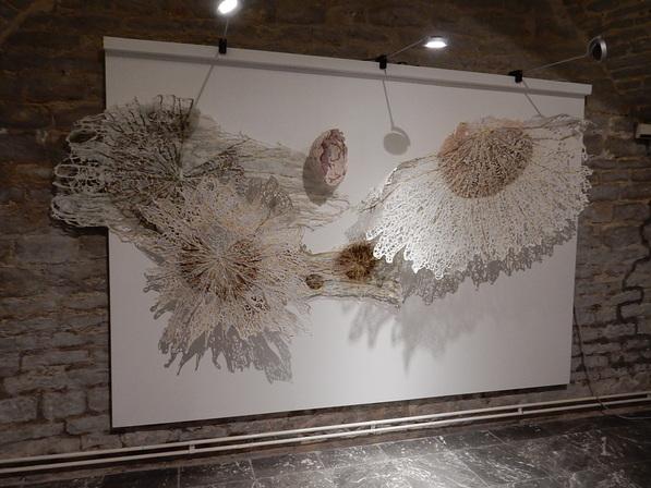 Exposition à Meise