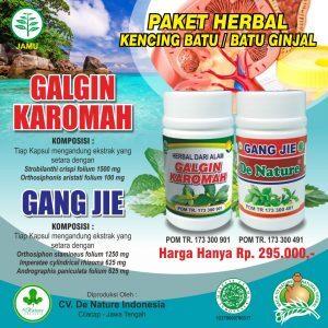 Obat Batu Ginjal De Nature Kapsul Gang Jie dan Galgin Karomah