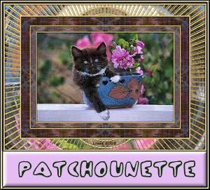 Patchounette chat noir