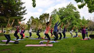 dance ballet class yoga park stretching